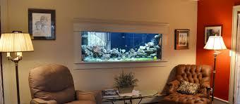 fish tank stand design ideas office aquarium. Custom Aquariums, Reef Tanks, Aquarium Start Up Service, Cabinet Stand Design, Installation \u0026 Maintenance! Fish Tank Design Ideas Office A