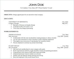 Importance Of A Resume What My Resume Should Look Like Importance