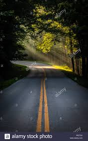 The Suns Early Morning Rays Shine On The Curve Of A Paved Roadway