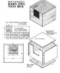 screech owl house plans luxury owl house plans owl box bibserver of screech owl house plans