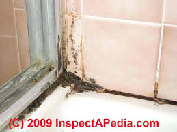 how to clean bathroom tile mold clean up tile grout joints remove bathroom mold prevent future how to clean bathroom tile mold