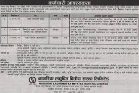 Jobs Nepal Vacancy Deputy Ceo Head Internal Audit And