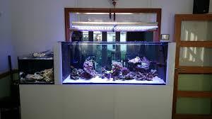 led reef tank orphek atlantik fixture