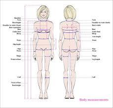 Woman Measurements Body Sada Margarethaydon Com