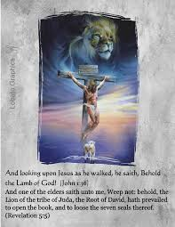 Image result for pictures of the the Bible lamb of God