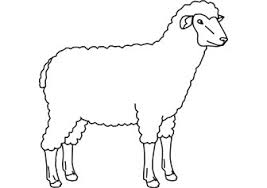 Small Picture Printable Sheep Coloring Pages Coloring Me