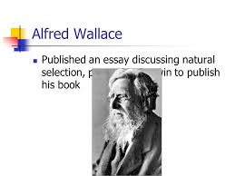 chapter evolution barron s book ppt video online 30 alfred wallace published an essay discussing natural selection