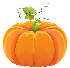 orange clipart png. clipart pumpkin png orange