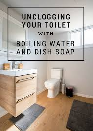 don t want to use nasty chemicals to unclog your toilet or don