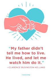 Birthday Quotes For Father From Son In Hindi Seedjusticeorg