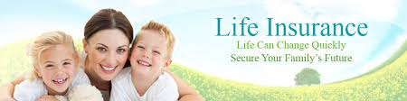 Banner Life Insurance Quote Classy Life Insurance Quotes Ontario Hire Ambassador