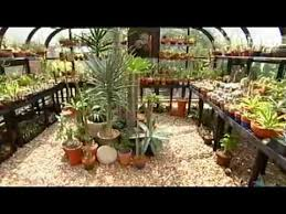 Small Picture Jeff Pavlat succulent garden design Central Texas Gardener YouTube