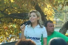 Ivonne Hernández pide que agenda medioambiental se retome en propuestas  legislativas