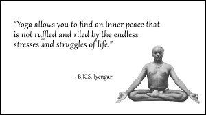 Image result for bks iyengar quote on work