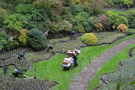 bustling time for butchart gardens as winter nears
