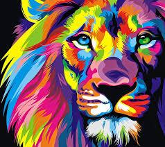 lion 1080p 2k 4k 5k hd