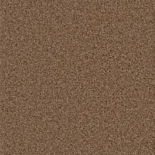 home decorators collection carpet sample around the clock ii