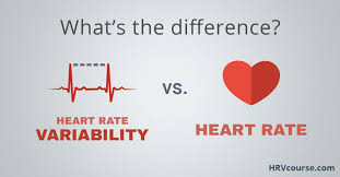 Heart Rate Variability Vs Heart Rate