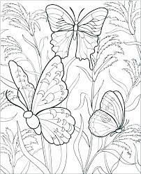 Coloring Pages Of Butterflies And Flowers Best Coloring Pages 2018