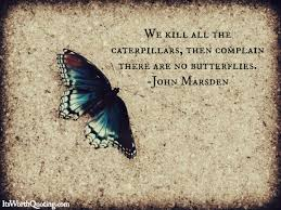 Butterfly Quotes Custom Butterfly Quotes
