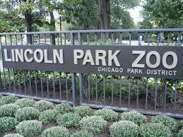 Image result for lincoln park zoo