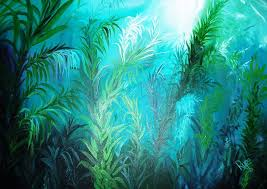 Image result for Ocean plants