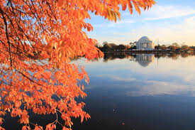 made our bucket list washington d c  at