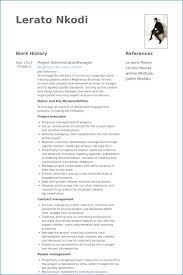 Senior Project Manager Resume Summary Resume Example