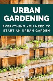 urban gardening for beginners