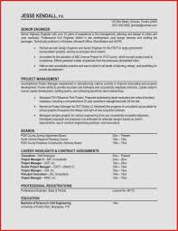 Sample Summary For Resume Sample Resume For It Professional Experience Hospi Noiseworks Co 38