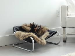 modern pet furniture. architect pets modern pet furniture p