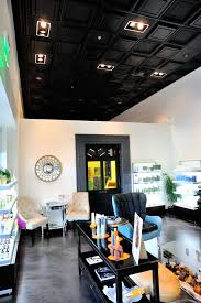 Black Ceilings trilogy salon salon of the year finalist phanomen design 2376 by xevi.us
