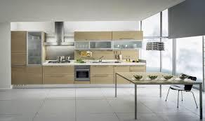 Modern Kitchens Cool Modern Kitchen Cabinets Graphicdesignsco