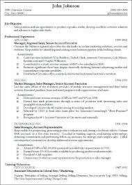 Resume Template For Experienced Professional Resume Examples For