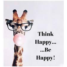 Giraffe Quotes Simple Giraffe Tumblr Quotes Clamdrain