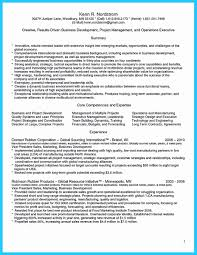 Project Manager Resume Summary Fresh Executive Summary Resume