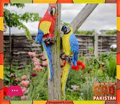 We at karachi garden design with our 26 years experience in. Buy Wall Hanging Real Like Macaw Parrot At Best Price In Pakistan