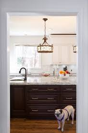 kitchens traditional kitchen beige wall