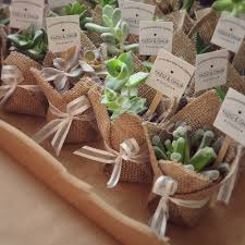 Mini sukulent, mini succulent, kakts, cactus, wedding favors, nikah ekeri,