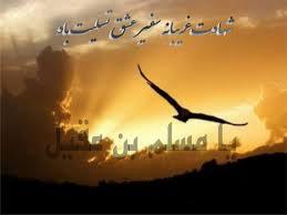 نتیجه تصویری برای شهادت مسلمابن وهابی
