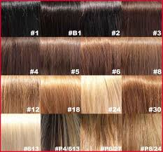brown hair color number 6 432132 princess hair cuts with regard to wella ash brown hair color chart