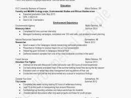 Download Beautiful Writing A Resume Summary Examples Of Summaries On