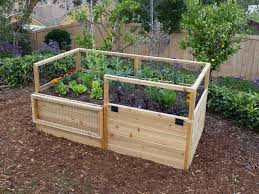 raised bed with fence