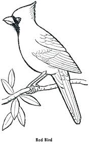 Winter Birds Coloring Pages Bird Color Pages Coloring Pages Disney