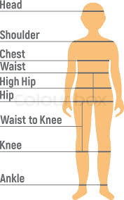 Boy Size Chart Human Front Side Stock Vector Colourbox