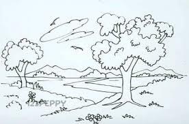 vine coloring books natural landscape