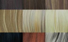 Remy Hair Extensions Color Chart Beauty Within Clinic