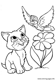 Small Picture The kitty playing with a bird kitten Coloring pages Printable