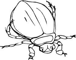 Small Picture Printable bug coloring pages ColoringStar