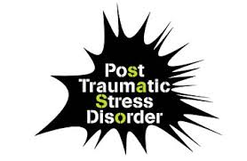 post traumatic stress disorder essay the post traumatic stress disorder essay